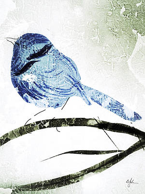 Little Blue Wren Art Print by Barry Johansen