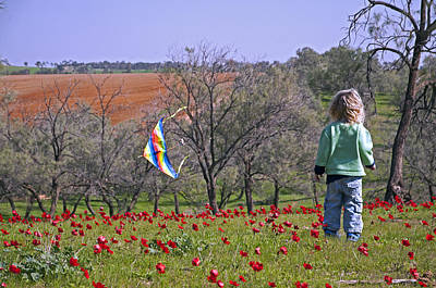 Photograph - Little Boy With A Kite At Ruchama Forest Israel by Dubi Roman