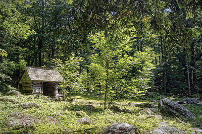Little Cabin Photograph - Little Cabin In The Woods by Cricket Hackmann