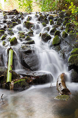 Photograph - Little Cascade In Marlay Park Dublin by Semmick Photo