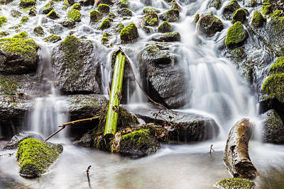 Photograph - Little Cascade In Marlay Park by Semmick Photo