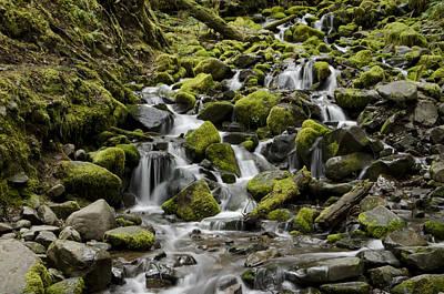 Photograph - Little Cascades by Heather Applegate