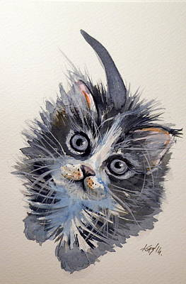 Little Cat Original