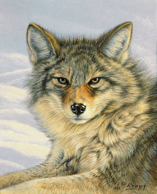 Coyote Painting - Little Coyote by Paul Krapf