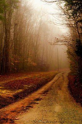 Photograph - Little Dirt Road by Laura DAddona