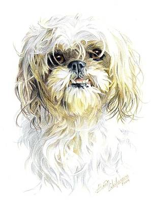 Drawing - Little Dog. Commission. by Alena Nikifarava
