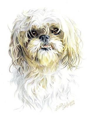 Drawing - Little Dog. Commission. by Alena Nikifarava