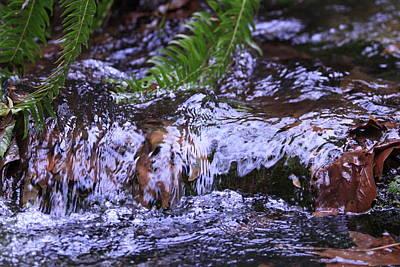 Photograph - Little Falls by Donald Torgerson