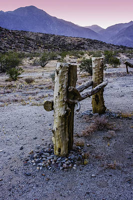 Photograph - Little Fencepost by Karen Stephenson