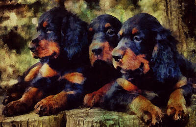 Scottish Dog Mixed Media - Little Gordons In A Huddle  by Janice MacLellan