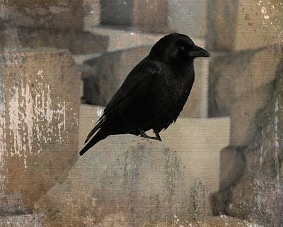 Little Gothic Crow  Art Print by Gothicrow Images