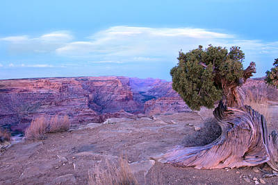 Photograph - Little Grand Canyon by Darryl Wilkinson