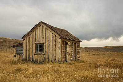 Photograph - Little House On The Prairie by Terry Ellis