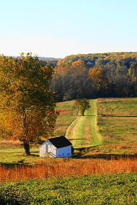 Photograph - Little House On The Prarie by Michael Porchik