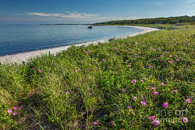 Photograph - Little Island Beach by Susan Cole Kelly