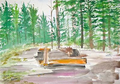 Little Island Campsite On Basswood Original by Troy Thomas