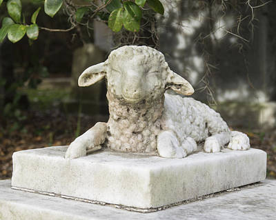 Photograph - Little Lamb Sculpture by MM Anderson