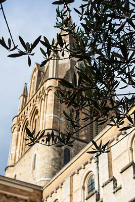 Wall Art - Photograph - Little Leaves By The Steeple by Sara Ricer