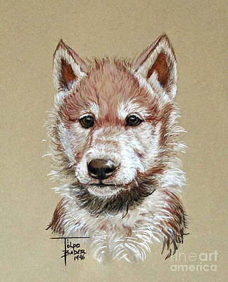 Painting - Little Lobo by Art By - Ti   Tolpo Bader