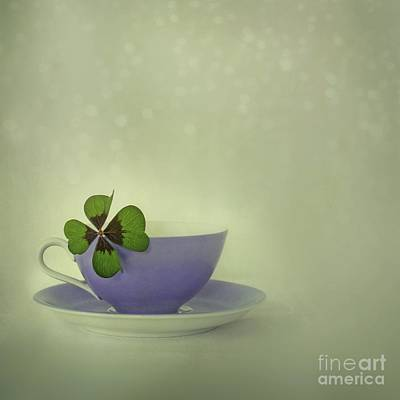 Four Leaf Clover Photograph - Little Luck by Priska Wettstein