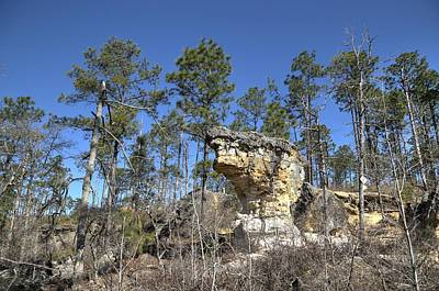Photograph - Little Peach Tree Rock by Charles Hite