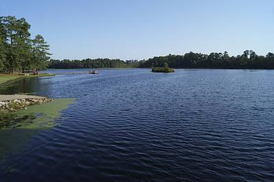 Photograph - Little Pee Dee State Park Lake by MM Anderson