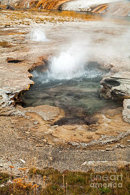 Photograph - Little Pool Geyser At Black Sands Geyser Basin by Fred Stearns