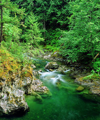 Little Qualicum River On Vancouver Art Print by Jaynes Gallery