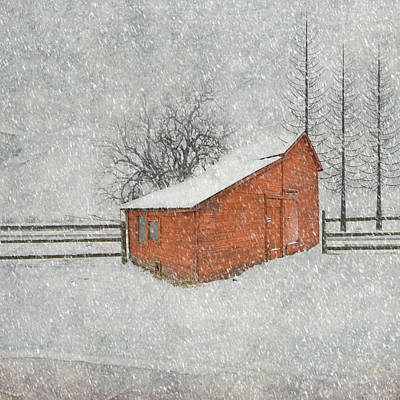 Paint Photograph - Little Red Barn by Juli Scalzi