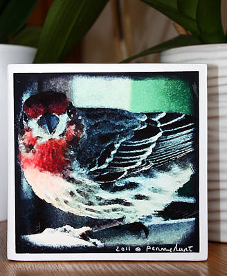 Mixed Media - Little Red Finch Photo Block by Penny Hunt
