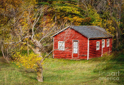 Photograph - Little Red Log Cabin With Swirl by Grace Grogan