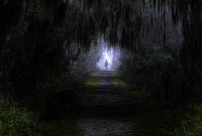 Little Red Riding Hood Dark Passage Print by Jay Droggitis