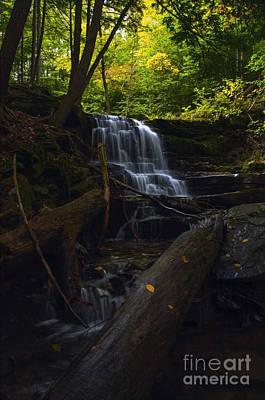 Photograph - Little Ricky's Falls II by Debra Fedchin