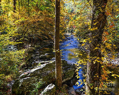 Photograph - Little River Fall by Paul Mashburn