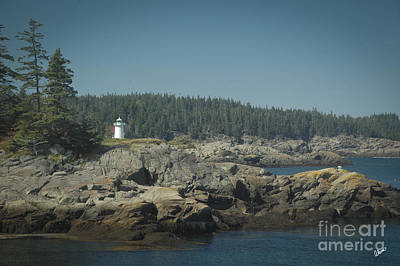 Photograph - Little River Lighthouse by Alana Ranney
