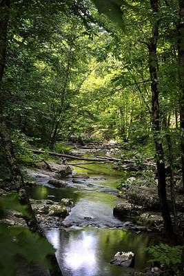 Little River Smoky Mountains Art Print