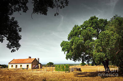 Little Rural House Art Print by Carlos Caetano