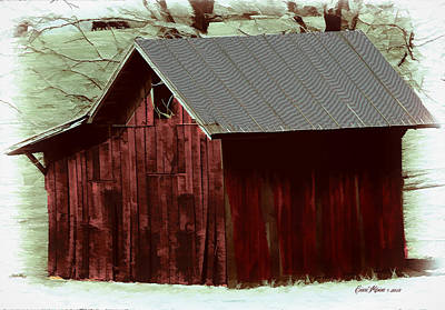 Photograph - Little Shack by Ericamaxine Price