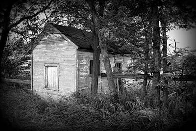 Photograph - Little Shack In The Woods by Lora Mercado