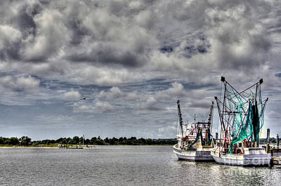 Photograph - Little Shrimpers   by Benanne Stiens
