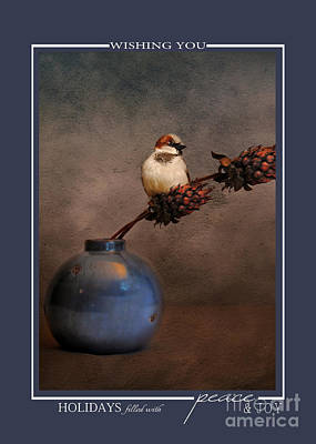 Photograph - Little Sparrow Song Bird Wildlife Christmas Cards by Jai Johnson