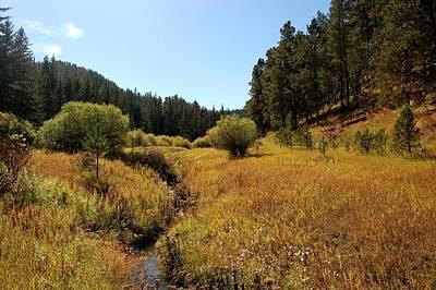 Photograph - Little Spearfish Creek In Autumn by Dakota Light Photography By Dakota
