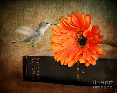 Book Flower Photograph - Little Student by Jai Johnson