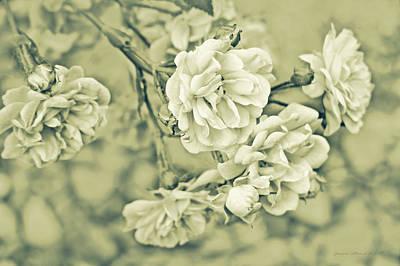 Little Tea Roses Celadon Green Art Print