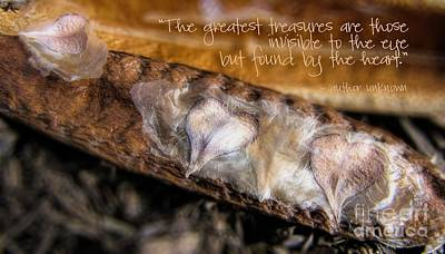Photograph - Little Treasures by Peggy Hughes