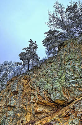 Photograph - Little Tree On A Cliff by Steve Hurt
