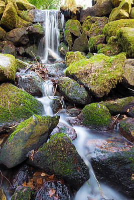 Photograph - Little Waterfall In Marlay Park by Semmick Photo