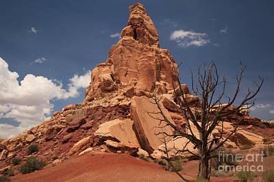 Photograph - Little Wildhorse Tower by Adam Jewell