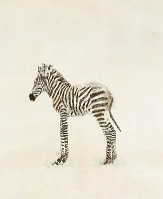 Colourfull Painting - Little Zebra by Bleu Bri