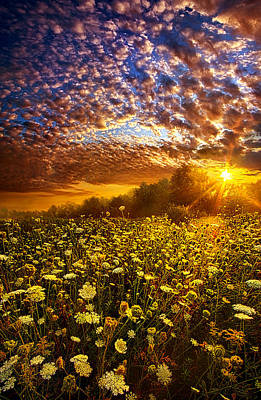 Lace Photograph - Live Every Moment by Phil Koch